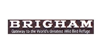City of Brigham
