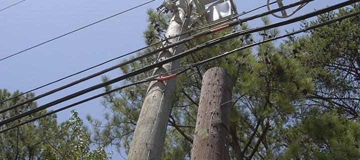 Double Poles